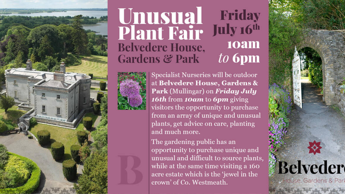 Upcoming Events – Friday 16th July
